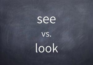 041-see-vs-look